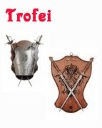 Medieval - Medieval Objects - Armour-Swords Wall Panel Decorative